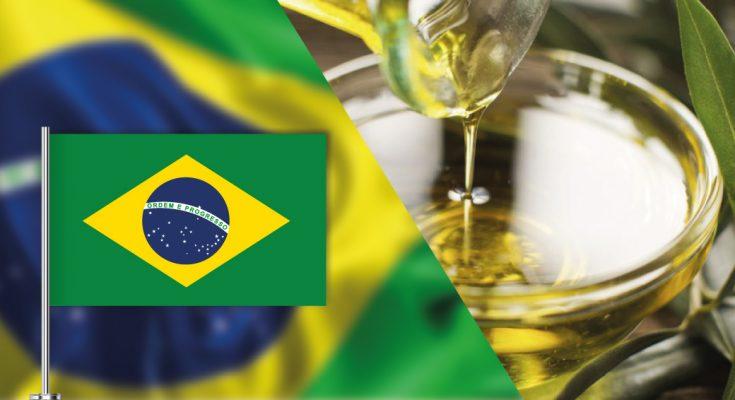 مع تضاعف الاستهلاك المحلي: البرازيل سوق واعدة لزيت الزيتون