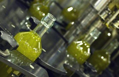 المرصد الوطني للفلاحة: عائدات مبيعات زيت الزيتون ترتفع بنسبة 74%